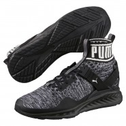 Puma IGNITE evoKNIT Shoes Mens Black-Quiet Shade-Black (206EOFKS)