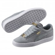 Puma Suede Classic Shoes Boys Quarry-Quarry (530VMSZN)